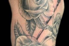 Candace Roses